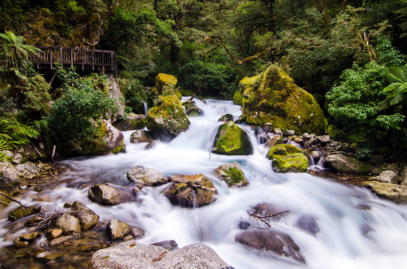 Marion Creek, Fiordland, New Zealand