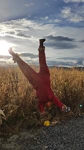 Scare Crow - Thanksgiving Point - Lehi - Utah - USA