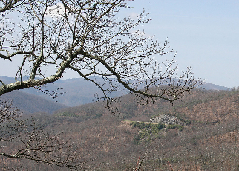 Near Funnel Top on the Blue Ridge Parkway