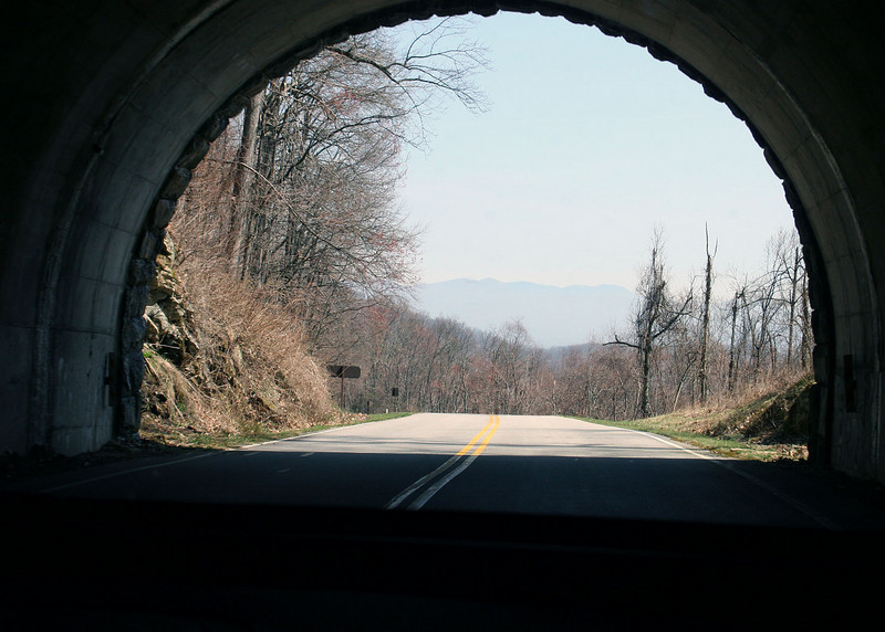On the Blue Ridge Parkway