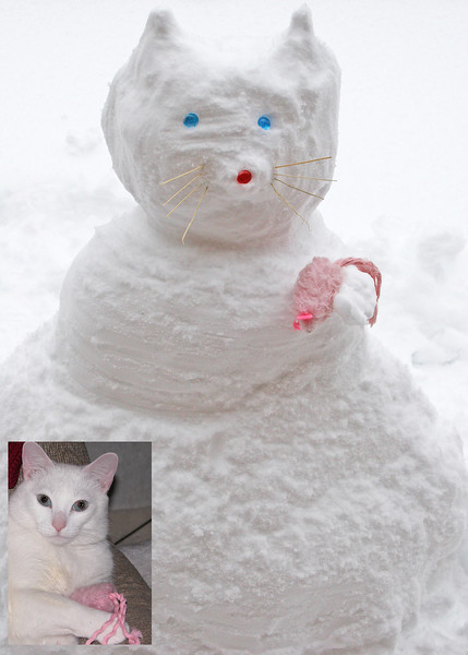 Our snow cat with our kitty Moloko