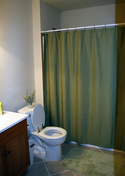 This is the guest bathroom