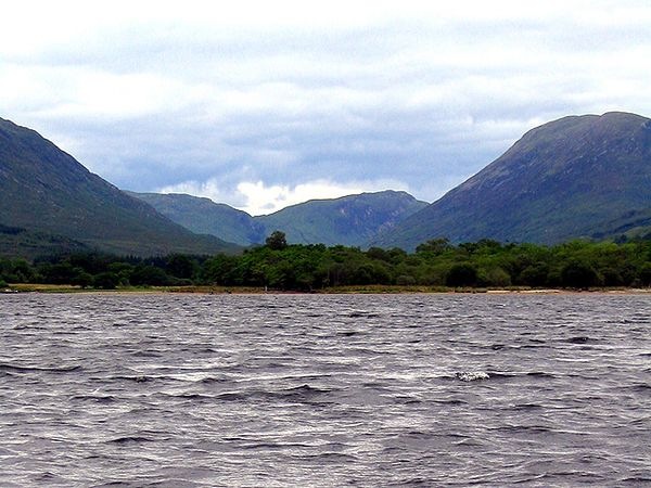 View from the ferry accross Loch Awe