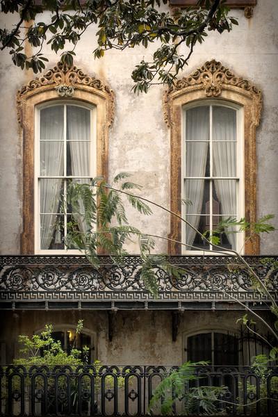 Savanna Windows