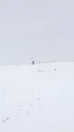 2017_Klondike_Downhill Sled