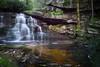 Later summer-fall, Shays Run falls