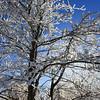 Snow Plaster 2