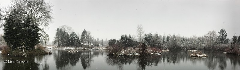 Panorama of Meadowbrooke Pond