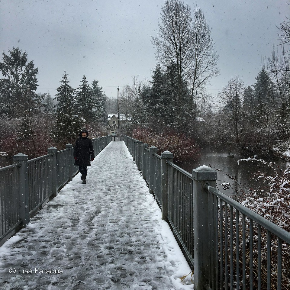 A Winter Walk in Meadowbrook Park