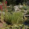 Decorative garden scene, Cady's Falls Nursery, Morrisville, VT