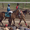 Rajiv Maragh aboard Baatesh in the 7th race