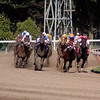 Several contenders making the final turn in the 8th race