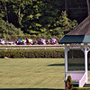 Gazebo and mounts in the backstretch, 9th race