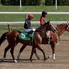 Alan Garcia aboard Ritual in the 7th race