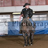 Tunica #8 Tunica Rot 1 : Rot1 1st an second steer