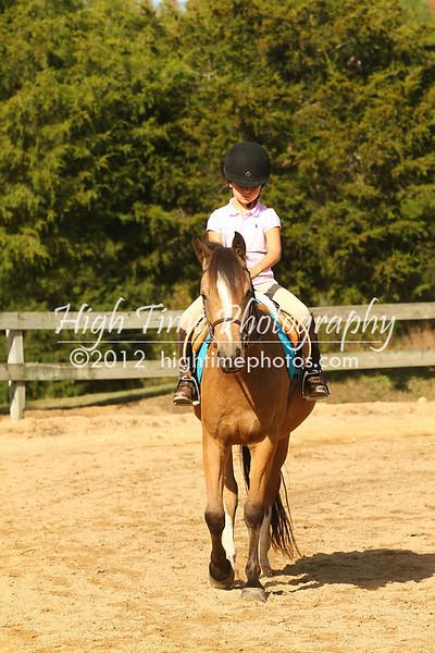 10-20-12 Everlast Equestrian