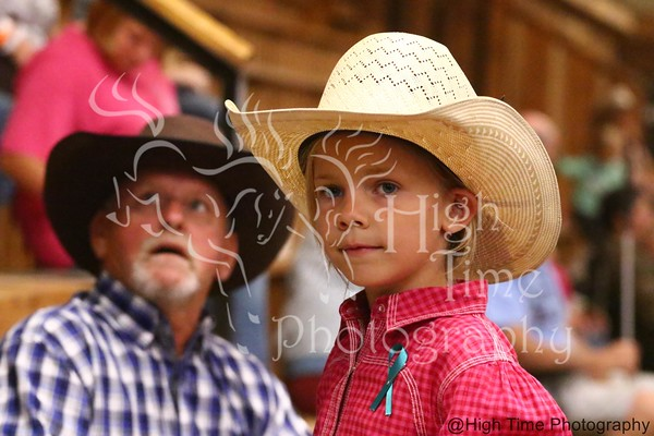2016 Jr Southern Association Rodeo Finals