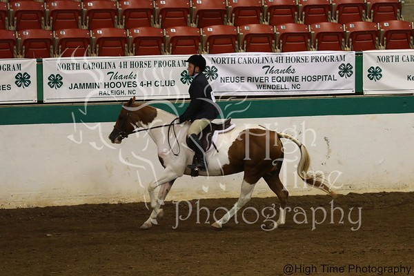 2017 NC State 4-H Horse Show