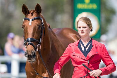 Hazel Shannon & Willingapark Clifford in the First Inspection 4.24.19.