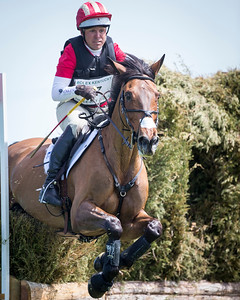 Buck Davidson and Ballynoe Castle RM at Rolex 3-day on 4.26.2014.