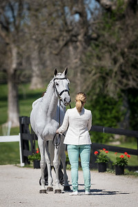 Catch A Star, and Caitlin Silliman, at the Rolex Three-Day Event 4.23.14.
