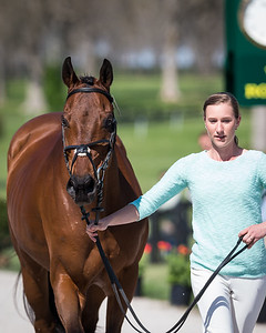 Enchantez, and Lindsey Oaks, at the Rolex Three-Day Event 4.23.14.