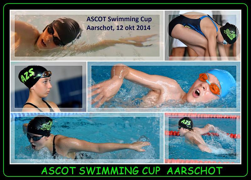 Ascot-Cup_Aarschot__2014-10-12-001