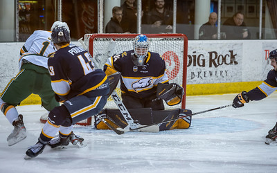 Hockey - UofA Bears vs UBC Thunderbirds