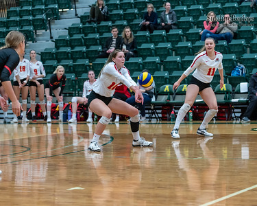 Volleyball - UofA Golden Bears vs UofC Dinos