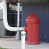 Reedy Creek, FL Station Hydrant by K  Elisberg
