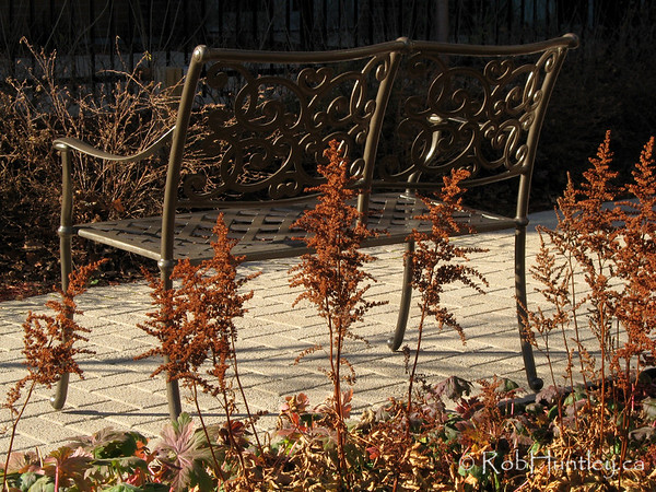 Patio bench in the fall. A late fall shot of a wrought iron bench on a patio surrounded by dried dead flowers.  © Rob Huntley