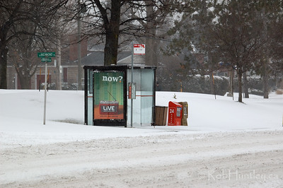 Bus stop on Richmond Road at Broadview Avenue in Ottawa during our first winter snowstorm of the season. © Rob Huntley