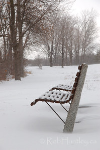 A park bench along the pedestrian and bicycle path alongside the Ottawa River parkway and facing the Ottawa River. The first snowstorm of the season left about 20 cm of snow in mid-December. © Rob Huntley
