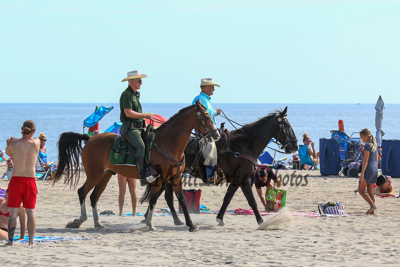 The mounted patrol with their horses were patroling the beach on Sunday 8-26-2018 at Hampton Beach, NH.  Matt Parker Photos