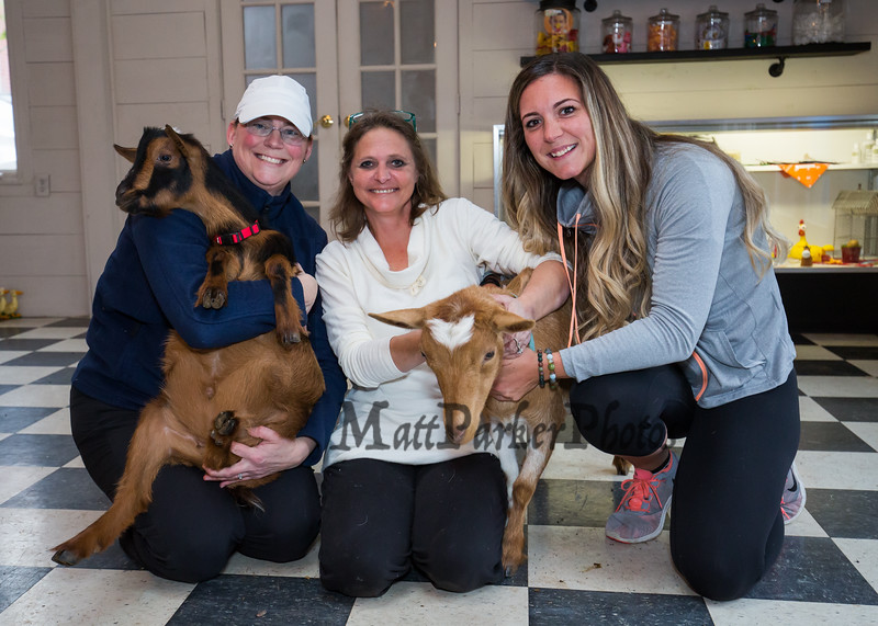 "Dotty Thompson of Legacy Lane Farm (center) with friend Jess Jamieson (L) and ""Goat Yoga"" instructor Jordan Taylor (R) pose for a photo with goats ""Billy"" (L) and ""Sylvia"" (R) on Tuesday 11-5-2019 @ Stratham, NH.  [Matt Parker/Seacoastonline]"