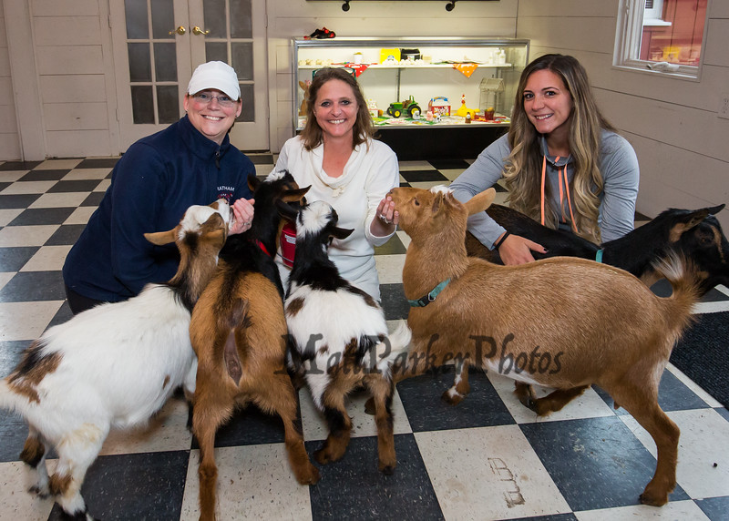 """Dotty Thompson of Legacy Lane Farm (center) with friend Jess Jamieson (L) and """"Goat Yoga"""" instructor Jordan Taylor (R) pose for a photo with some of """"Dotty's Goats"""" on Tuesday 11-5-2019 @ Stratham, NH.  [Matt Parker/Seacoastonline]"""