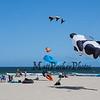 Kites flying at the beach on a cool, windy and sunny Sunday 8-25-2019, Hampton Beach, NH.  Matt Parker Photos