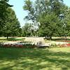 IMG_5814 LR (roosevelt park)