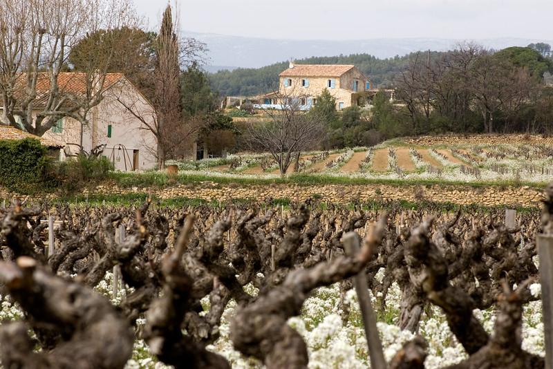 Bandol countryside.