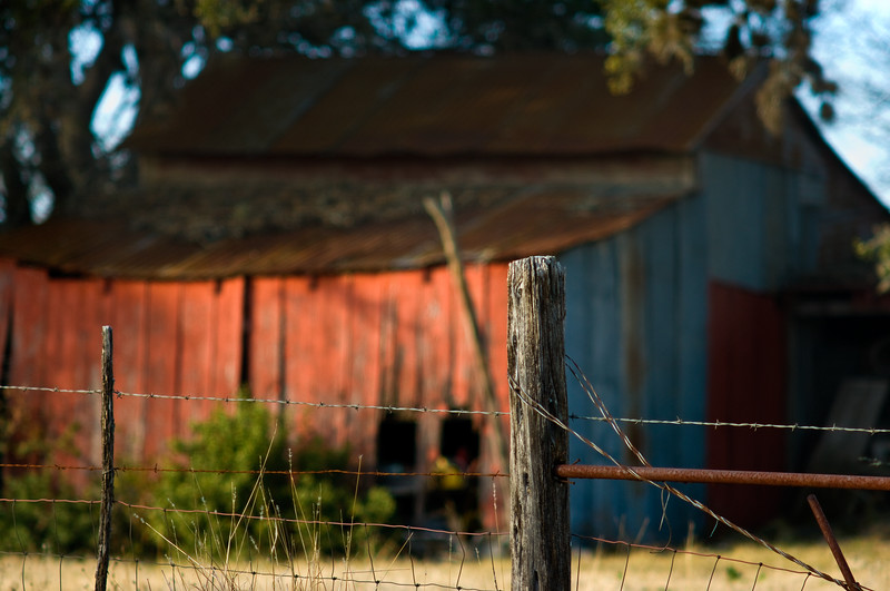 Old Shed on Texas Rural Road.