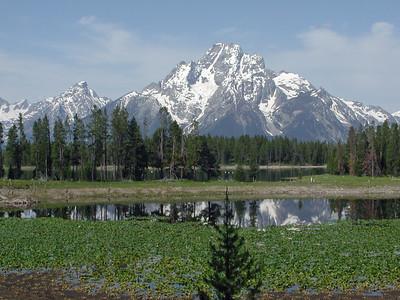 Swan Lake Teton