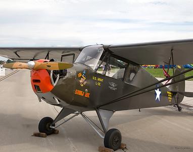 L-3E Grasshopper