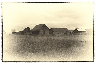 Homestead, Mormon Row, Grand Teton National Park, WY