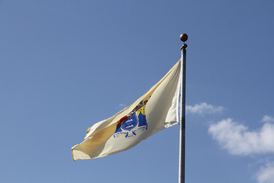 New Jerey State Flag
