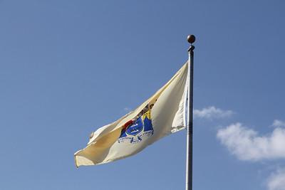 New Jerey State Flag