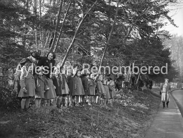 Old Berkeley Hunt at Aston Clinton, Jan 12 1950