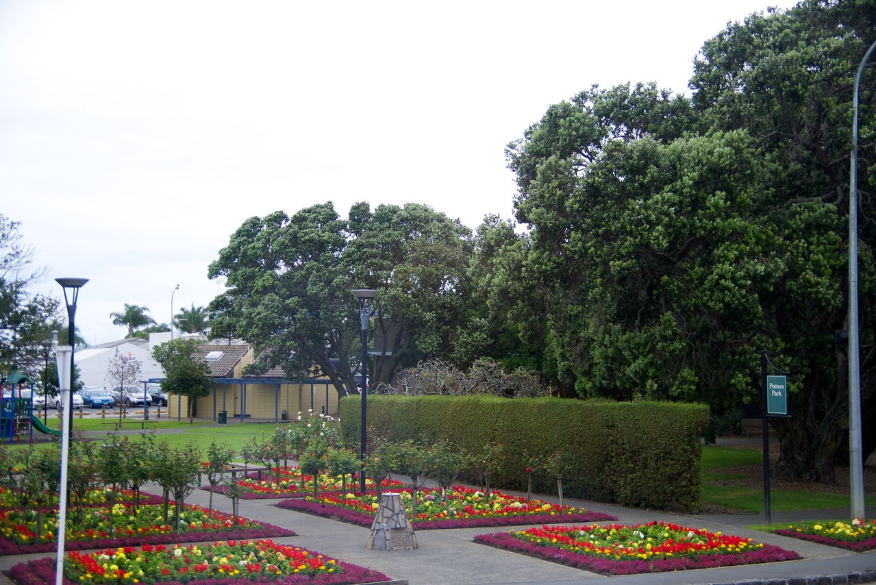 Green Area-Public Park in Middle of Takapuna, Suburb of Auckland (taken from bus)