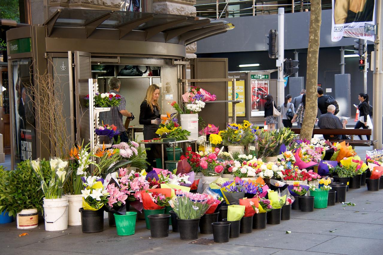 Flower Vendor at Martin Place