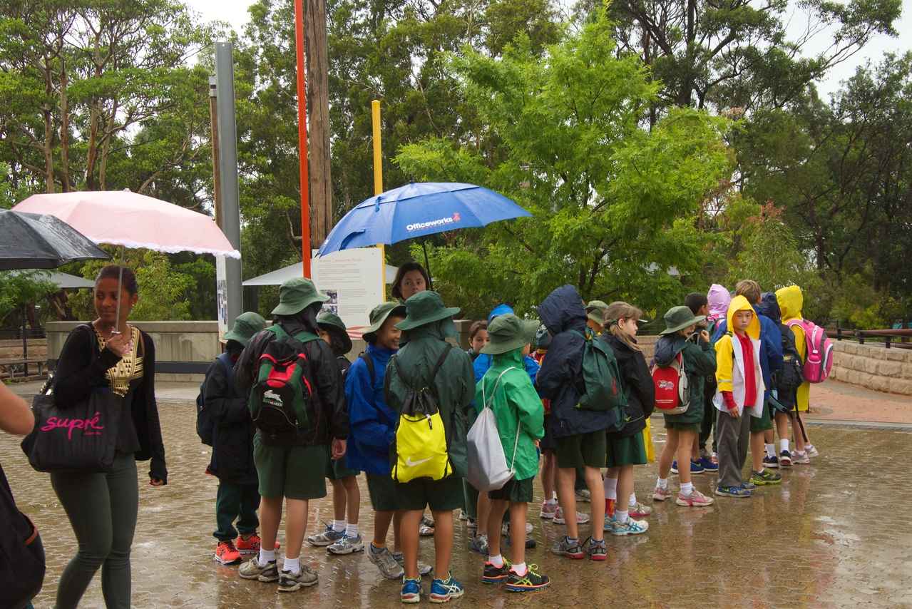 School Group at Taronga Park Zoo