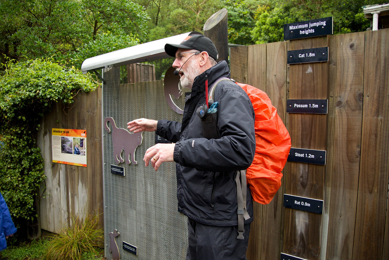 Guide at Zealandia,Fenced Off Mainland Conservation Island In The Middle of Wellington
